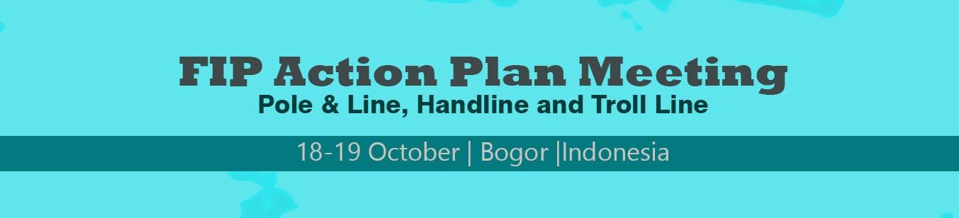 FIP Action Plan Meeting