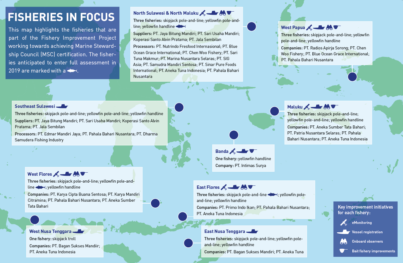 Update on MSC full assessment of six Indonesian tuna fisheries
